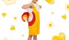 Костюм петуха. Шьем за вечер или создаем вместе с ребенком красочный образ для праздника