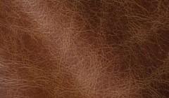 Экокожа – безвредный материал, выгодно отличающийся от других искусственных кож