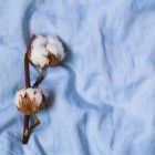 Как отличить хлопковую ткань от льняной? Для чего лучше использовать хлопок, а для чего — лен?