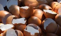 Яичная измельчённая скорлупа – как естественный отбеливатель и чистящее средство