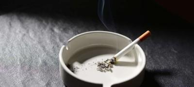 Пепел от сигарет — как чистящее, абсорбирующее и полировочное средство