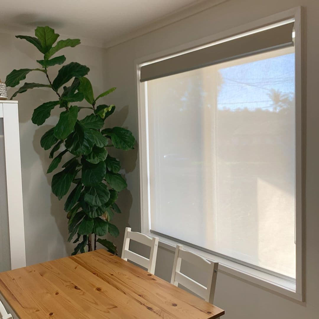 Прозрачная рулонная штора