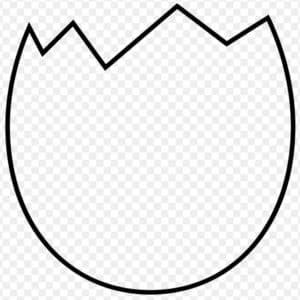 Схема скорлупы